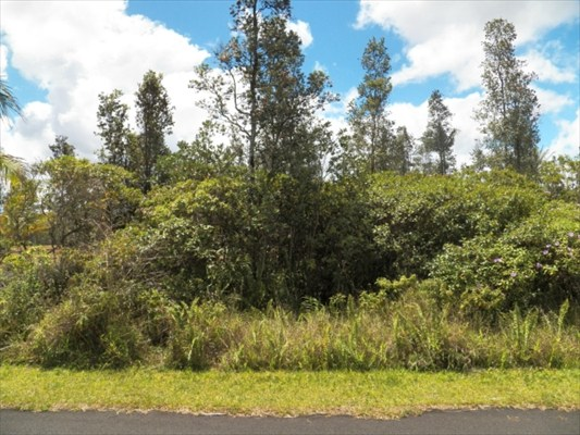 Real Estate for Sale, ListingId: 32440056, Pahoa, HI  96778