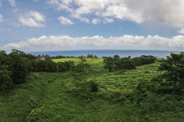 Real Estate for Sale, ListingId: 33032624, Pepeekeo, HI  96783