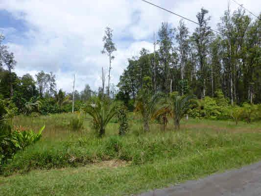 Real Estate for Sale, ListingId: 33692517, Pahoa,HI96778