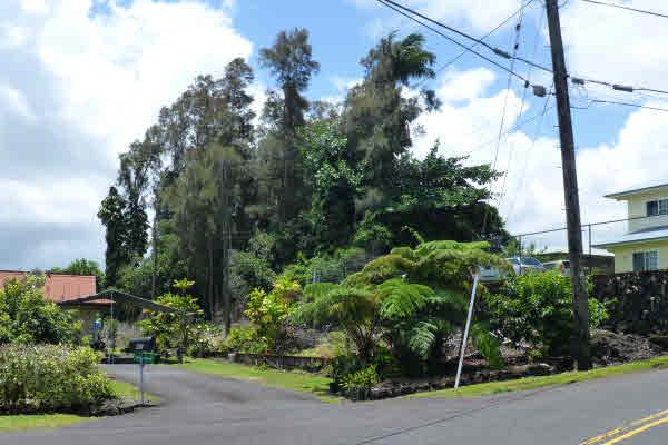 Real Estate for Sale, ListingId: 33743448, Hilo,HI96720