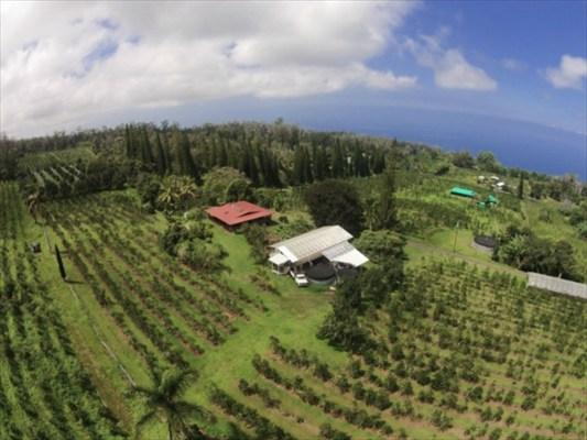 Real Estate for Sale, ListingId: 33222342, Holualoa,HI96725