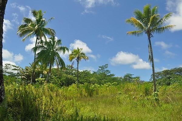 Real Estate for Sale, ListingId: 34711500, Pahoa,HI96778