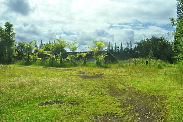 Real Estate for Sale, ListingId: 34719175, Pahoa,HI96778