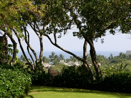 Real Estate for Sale, ListingId: 33618924, Kamuela, HI  96743