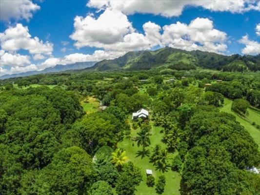 Real Estate for Sale, ListingId: 33864662, Kapaa,HI96746