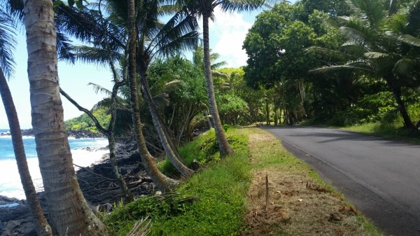 Real Estate for Sale, ListingId: 35004080, Pahoa,HI96778