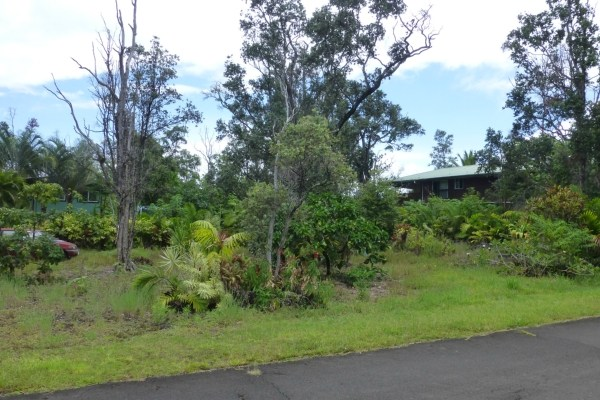Real Estate for Sale, ListingId: 34743725, Pahoa, HI  96778