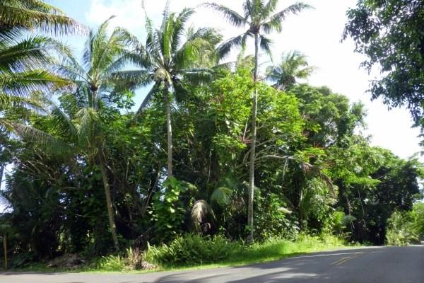 Real Estate for Sale, ListingId: 35327380, Pahoa,HI96778