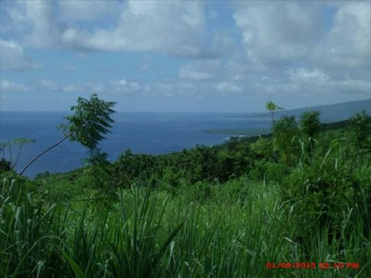 Real Estate for Sale, ListingId: 35327379, Captain Cook,HI96704