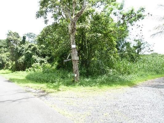 Real Estate for Sale, ListingId: 35625470, Pahoa,HI96778