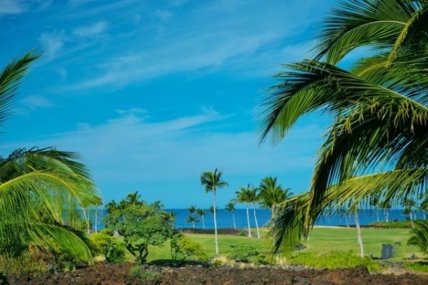Real Estate for Sale, ListingId: 36303897, Waikoloa,HI96738