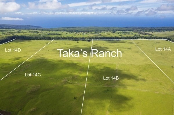 Real Estate for Sale, ListingId: 36303900, Honokaa, HI  96727