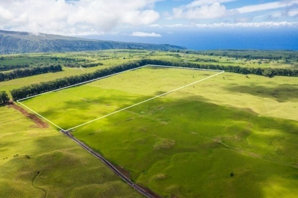 Real Estate for Sale, ListingId: 36303894, Honokaa, HI  96727