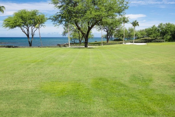 Real Estate for Sale, ListingId: 36703400, Kamuela, HI  96743