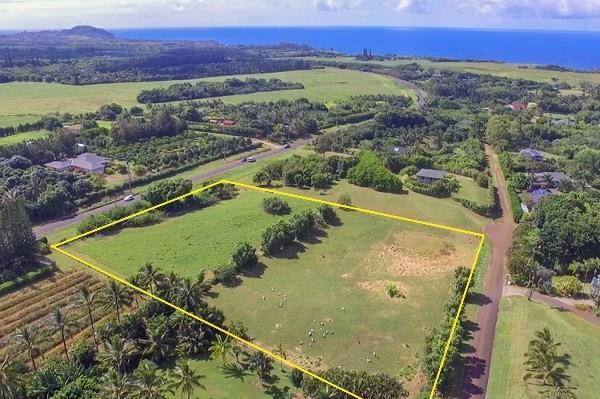 Kapuna Estates CPR Kilauea, HI 96754