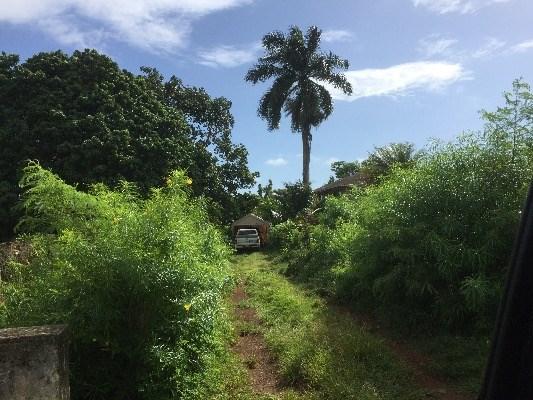Photo of 4176-B MOMI ST  KILAUEA  HI