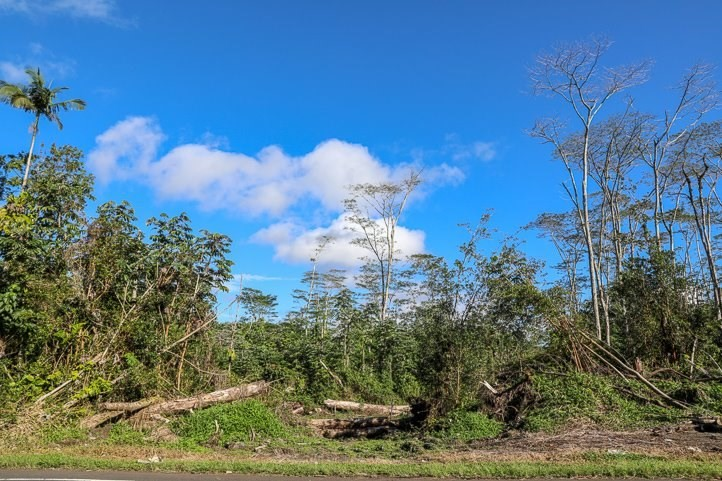 primary photo for PAHOA-KAPOHO RD Lot #: 9, PAHOA, HI 96778, US