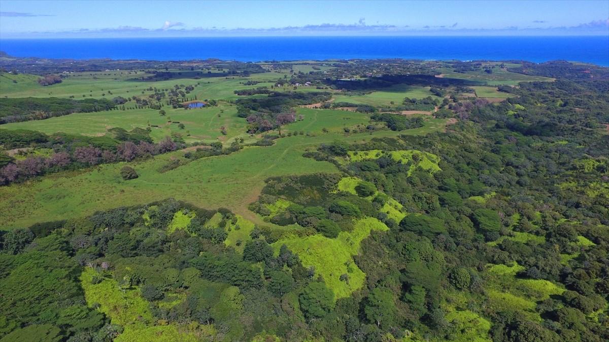 000000 Kilauea, HI 96754