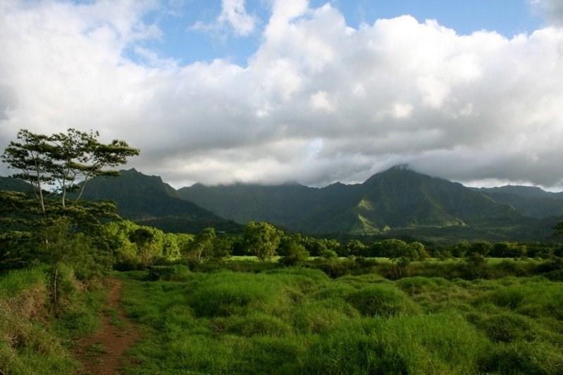 5211 HANALEI PLANTATION RD - photo 7