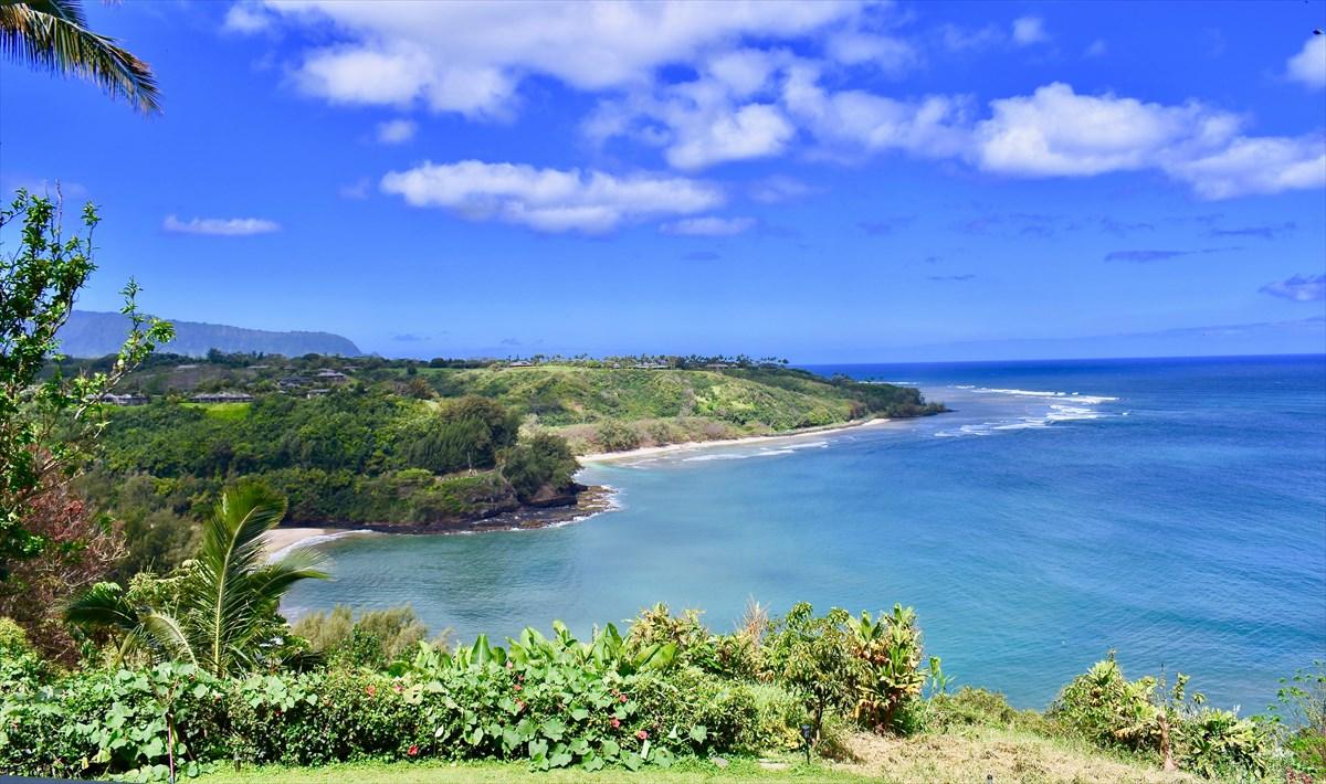 2991-C Kaohe Rd Kilauea, HI 96754