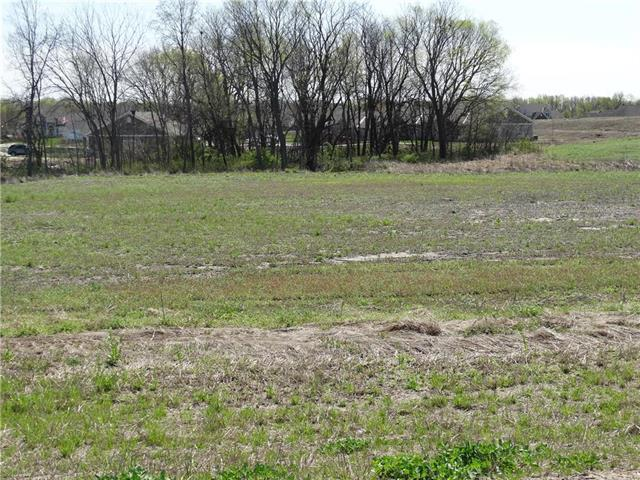 primary photo for Tract3 Watson Boulevard, Kearney, MO 64060, US