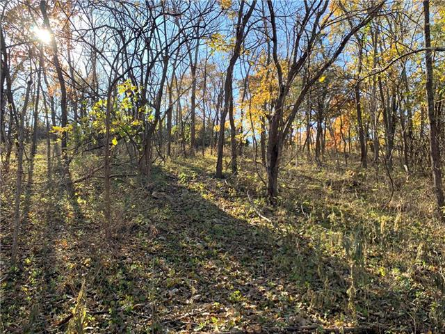 Lot 13 W Terrydale Road, one of homes for sale in Overland Park