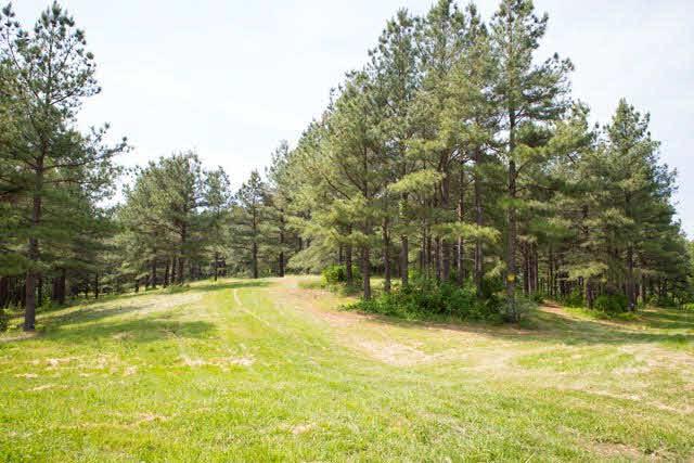 Real Estate for Sale, ListingId: 36316060, McGaheysville,VA22840