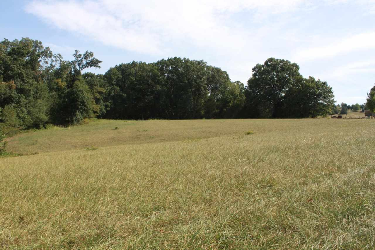 Image of  for Sale near Weyers Cave, Virginia, in Augusta County: 18.5 acres
