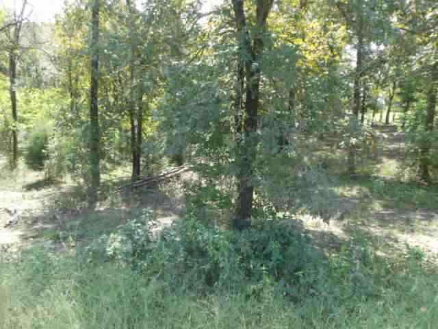 16.8 acres Magnet Cove, AR