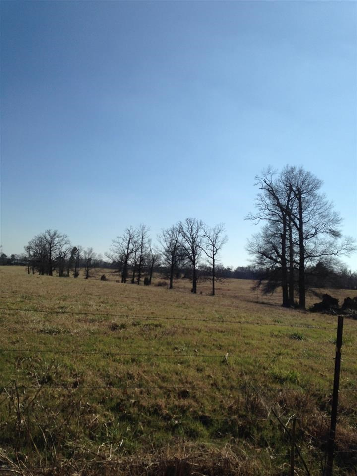 50 acres in Hot Springs, Arkansas