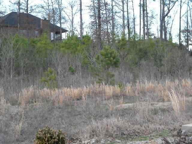 Real Estate for Sale, ListingId: 30034397, Hot Springs,AR71913