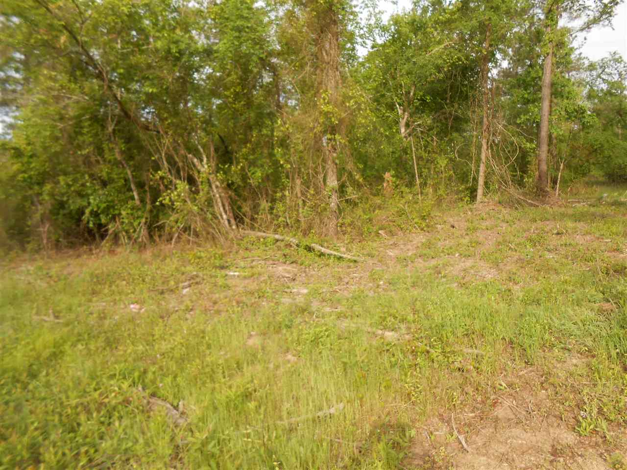 Image of Residential for Sale near Kirby, Arkansas, in Pike county: 130.00 acres