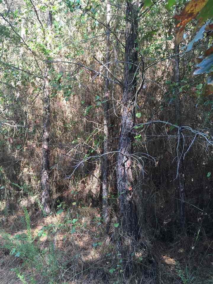 Photo of xx OAK GROVE ROAD  Caddo Gap  AR