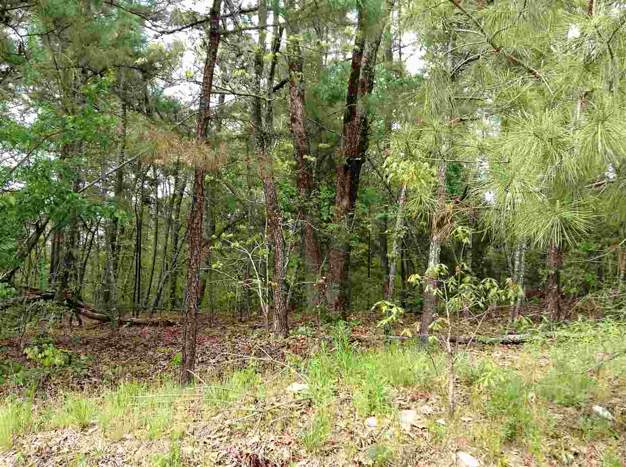 Photo of Blk 3Lot 2021 CAPTIAN BLOOD  Hot Springs  AR