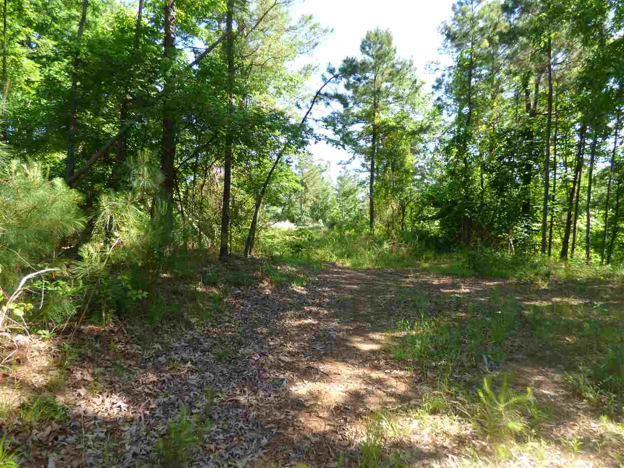 Photo of TRACT D CHARLIE STOVER RD  Royal  AR