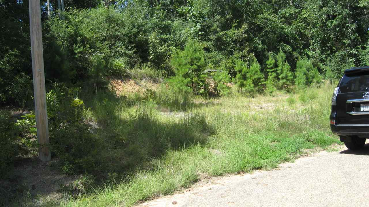 Photo of Lot 41Lot 42 GERONIMO ST  Hot Springs  AR