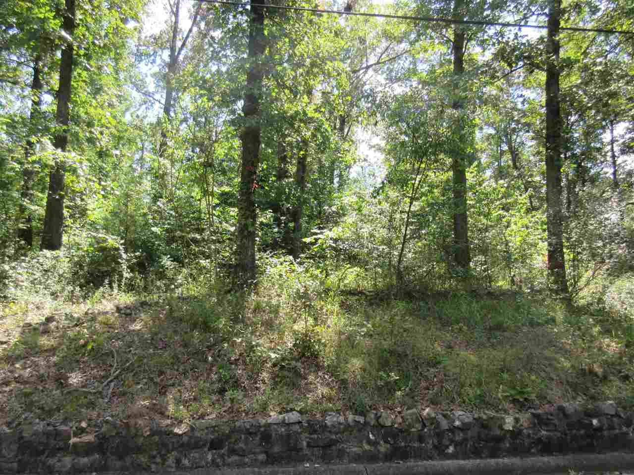 Photo of Lot 9 COTTONWOOD  Hot Springs  AR