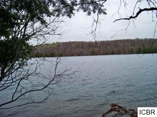 000  TURTLE LAKE RD Bigfork, MN 56628