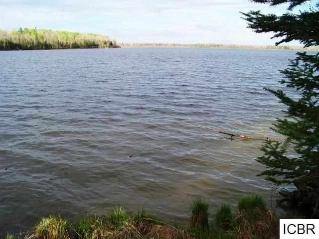 Lot E COUNTY RD 40 Effie, MN 56639