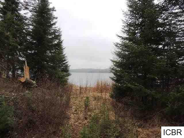 Lot 4 GUNN LAKE TRL - photo 11