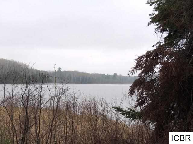 Lot 4 GUNN LAKE TRL - photo 12