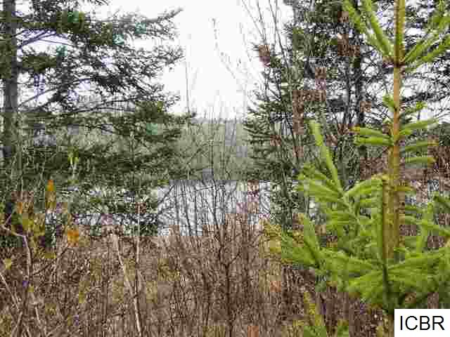 Lot 4 GUNN LAKE TRL - photo 13