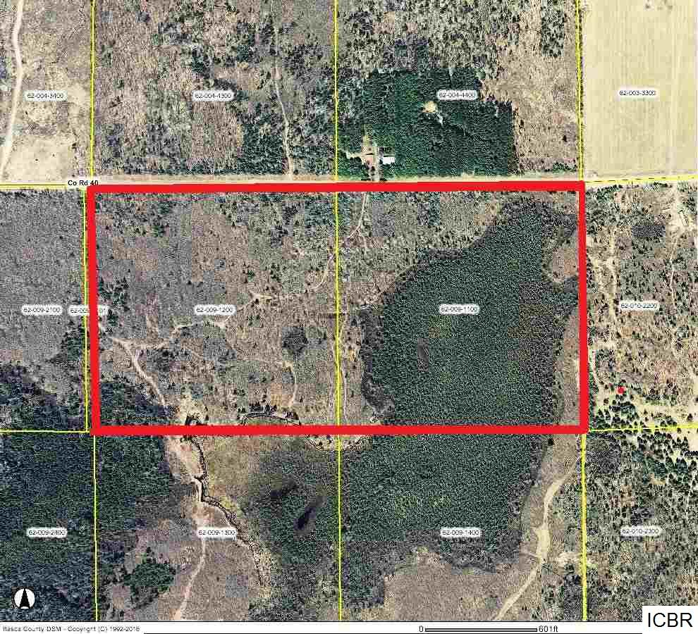 Tract A County Rd 40 Effie, MN 56639