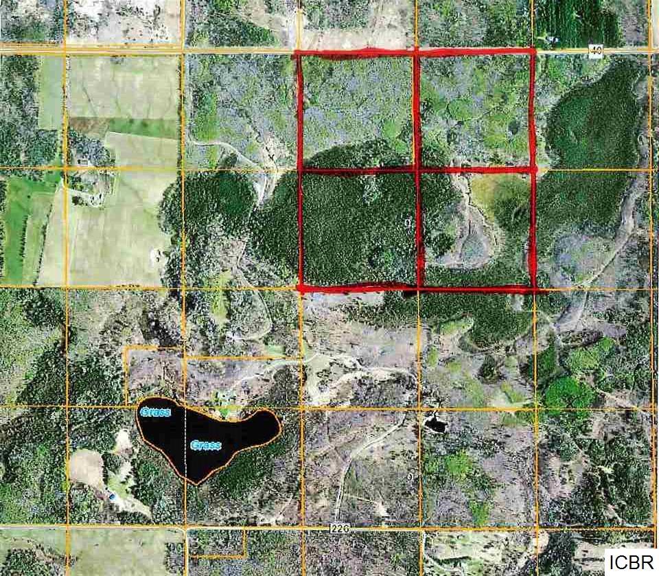 County Rd 40 Effie, MN 56639