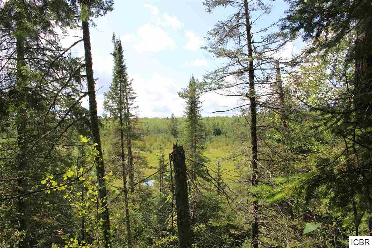 Tbd JACKSON RD, one of homes for sale in Cloquet