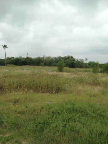 1.16 acres Falfurrias, TX