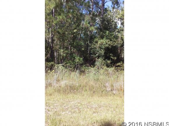 10405 W Deep Creek Blvd, Hastings, FL 32145