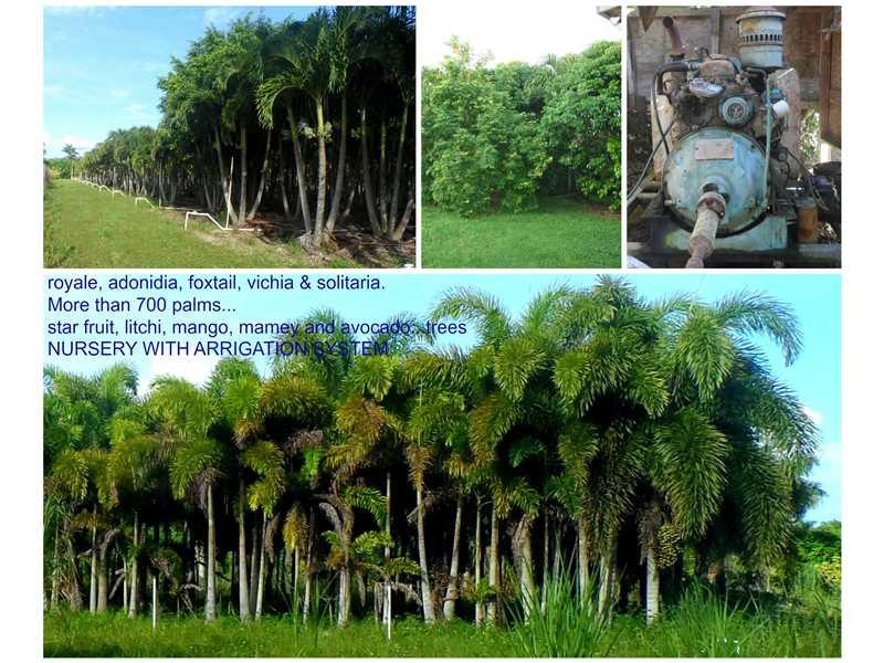 19991 Sw 180th St, Miami, FL 33187