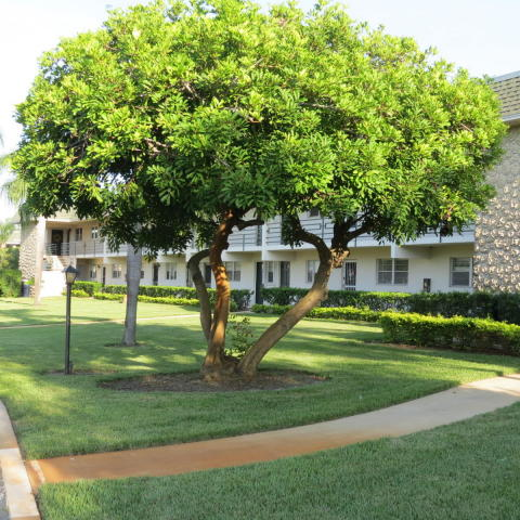 Rental Homes for Rent, ListingId:35677519, location: 1900 S Kanner Highway Unit 3102 Stuart 34994