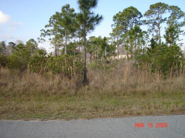 2856 Grant Avenue Avenue, Palm Bay in  County, FL 32909 Home for Sale